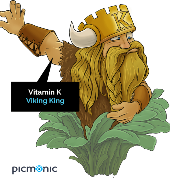 picmonic-vitamink